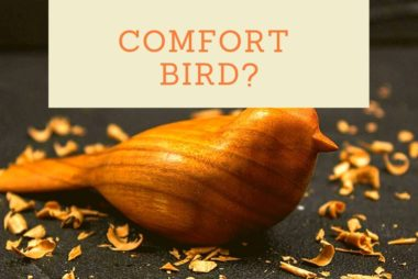 Comfort Bird Carving Kit